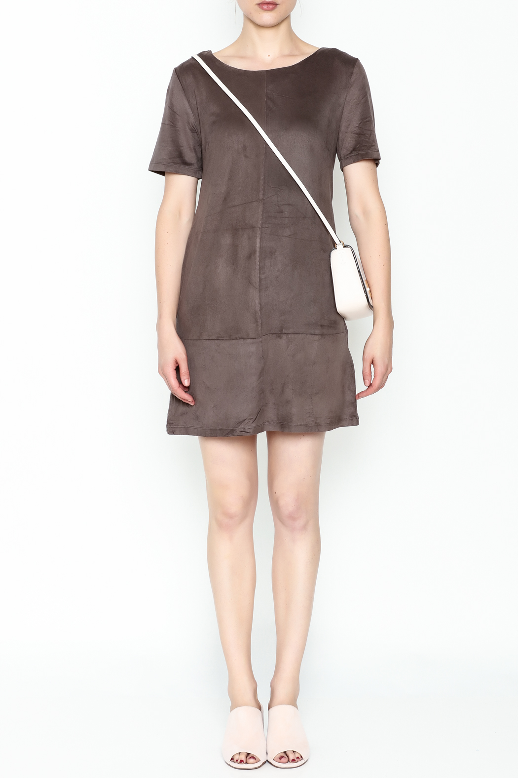 Bishop + Young Ivy Suede Shift Dress - Front Full Image
