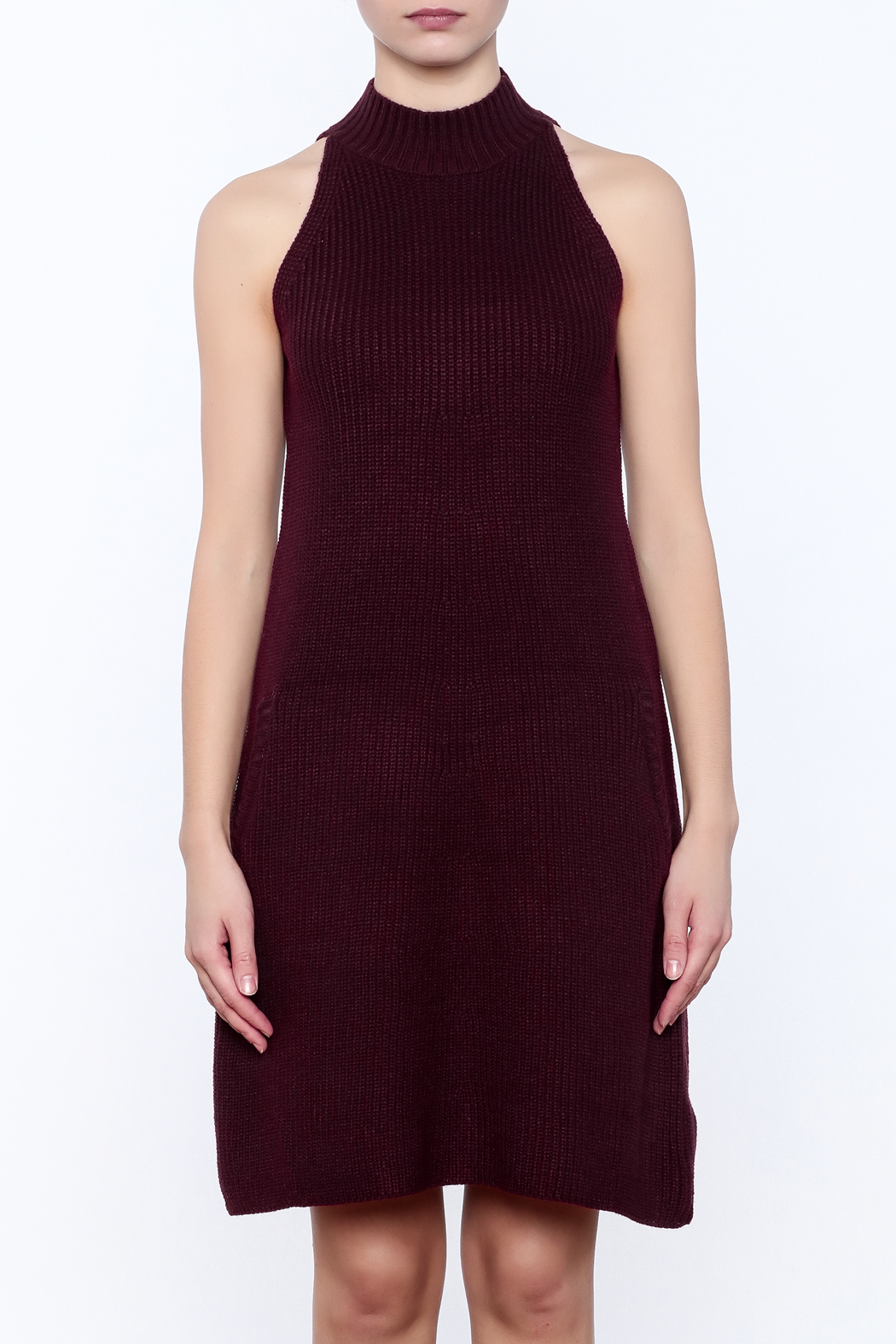 Bishop + Young Scarlett Sweater Dress - Side Cropped Image