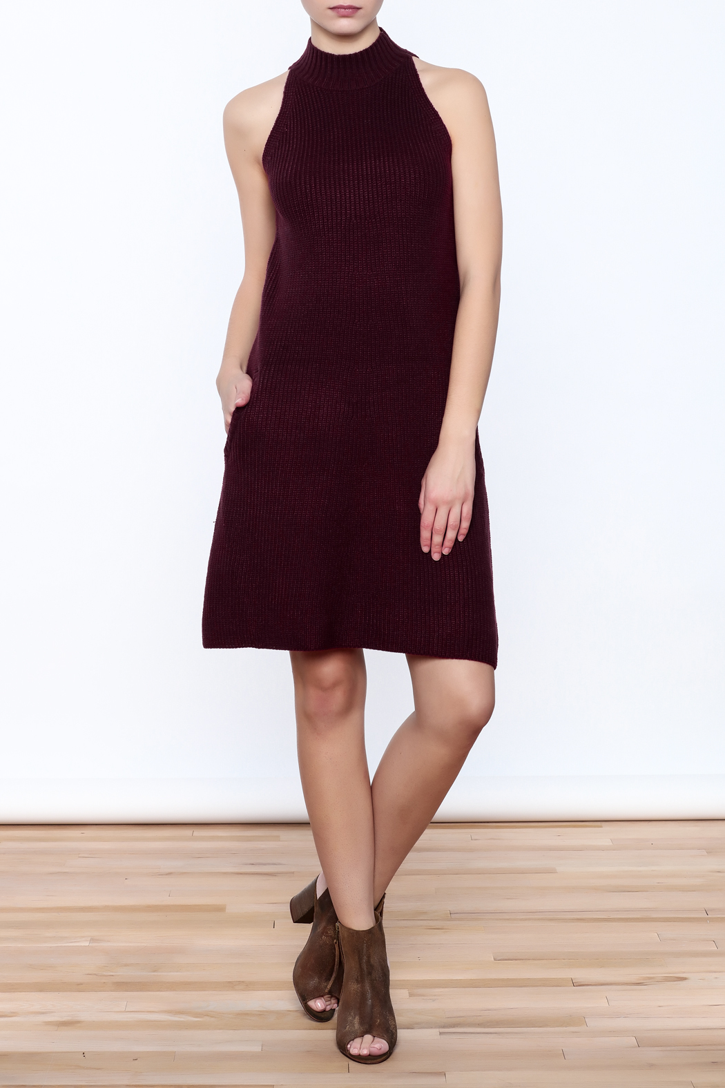 Bishop + Young Scarlett Sweater Dress - Front Full Image