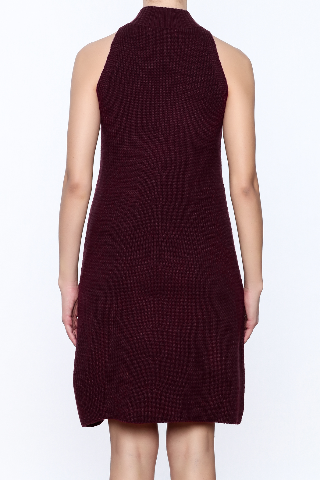 Bishop + Young Scarlett Sweater Dress - Back Cropped Image