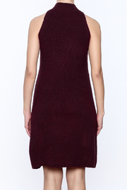 Bishop + Young Scarlett Sweater Dress - Back cropped