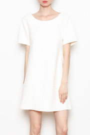 Bishop and Young Ivy Shift Dress - Product Mini Image