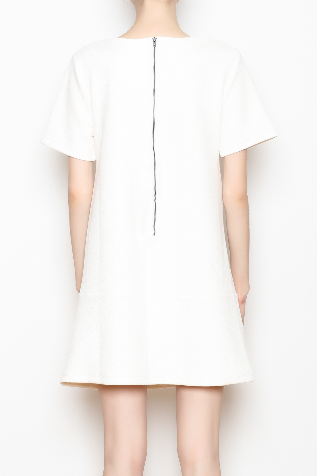 Bishop and Young Ivy Shift Dress - Back Cropped Image