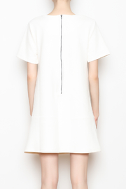 Bishop and Young Ivy Shift Dress - Back cropped