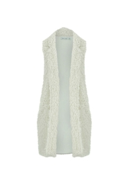 Bishop + Young Faux-Fur Fringe Vest - Front cropped