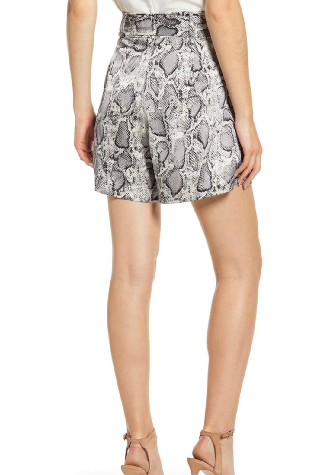 Bishop + Young Snake Print Shorts - Front Full Image
