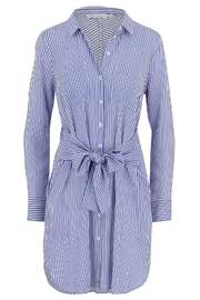 Bishop + Young Stripe Shift Dress - Product Mini Image