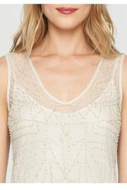 Johnny Was Mesh Beaded Dress - Side cropped