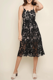 Umgee USA Black-Beauty Overlay Dress - Product Mini Image