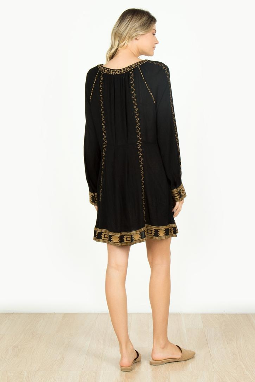 Monoreno Black Embroidered Dress - Front Full Image
