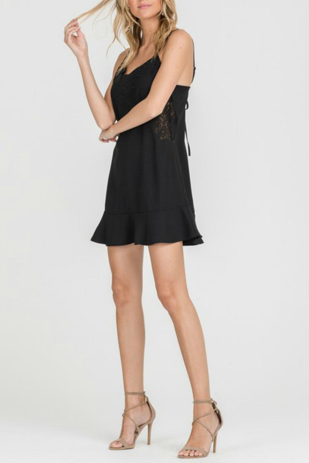 Lush Black Embroidered Dress - Side Cropped Image