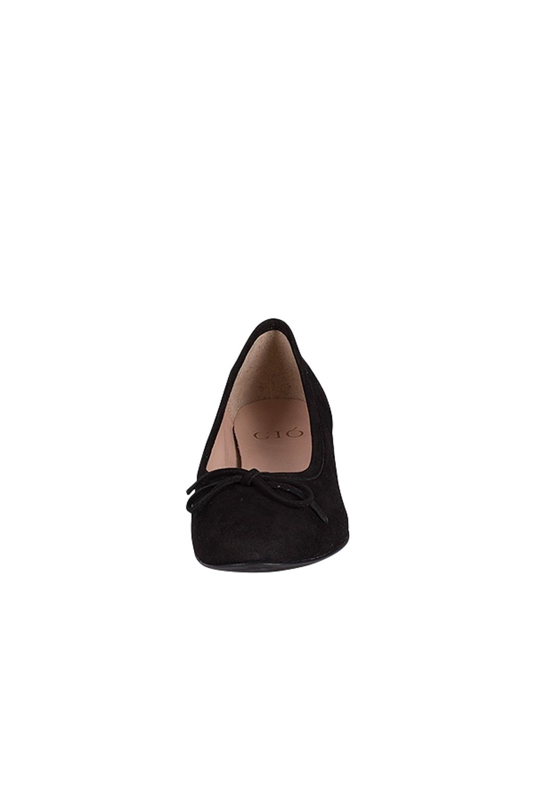 Pascucci Black Leather-Suede Ballerinas - Side Cropped Image