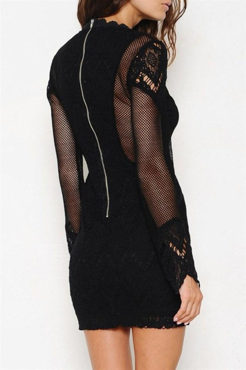 Latiste by AMY Sheer Mesh Dress - Side Cropped Image