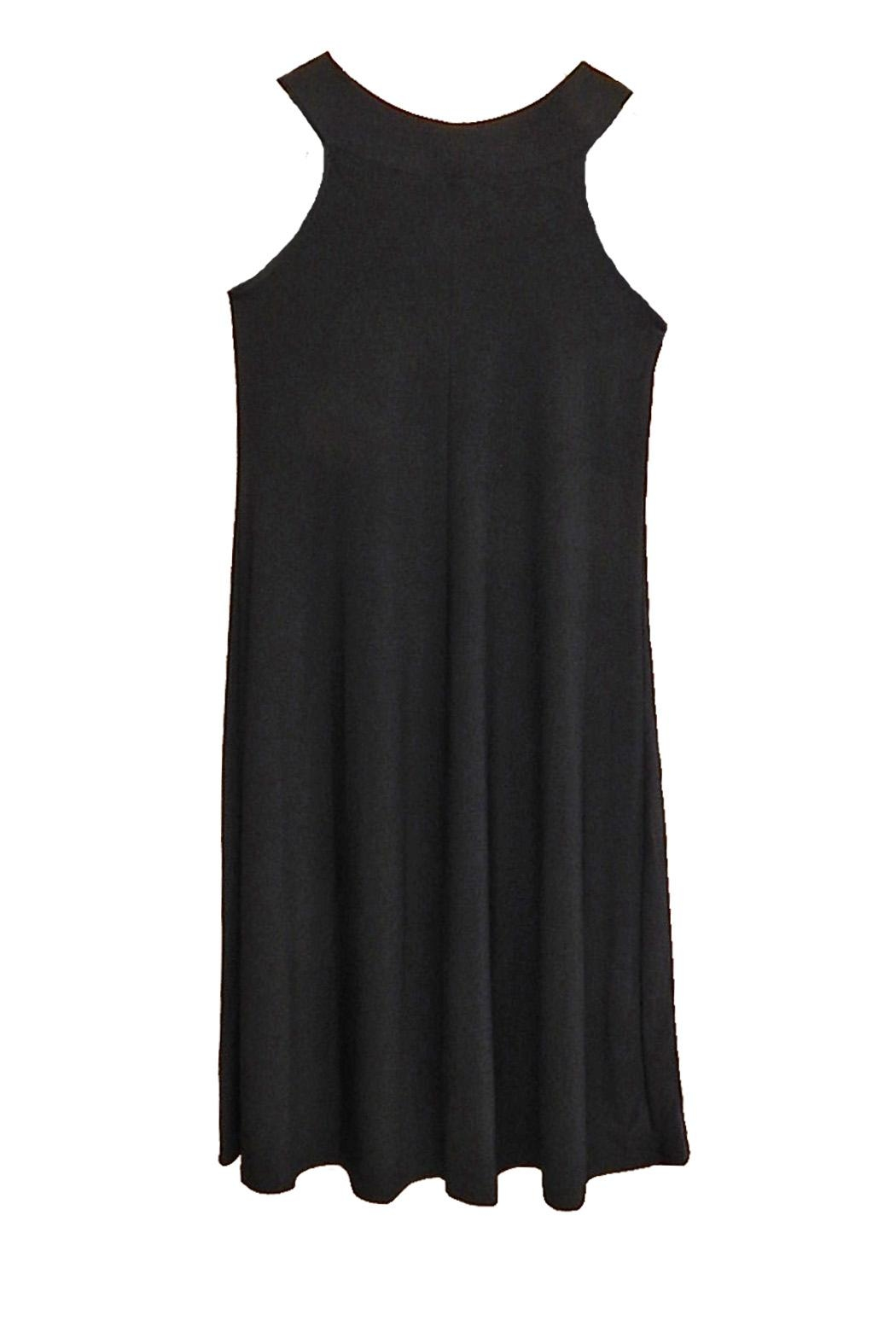 Ellen Parker Black Sleeveless Dress - Front Full Image