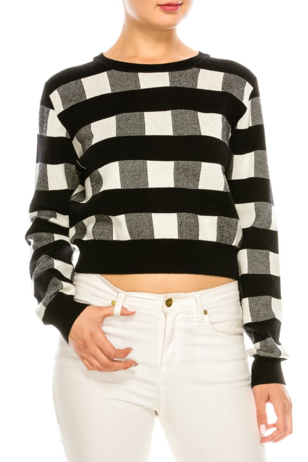 bff4804a06a6e Lush Black-White Gingham Sweater from New York by Dor L Dor — Shoptiques