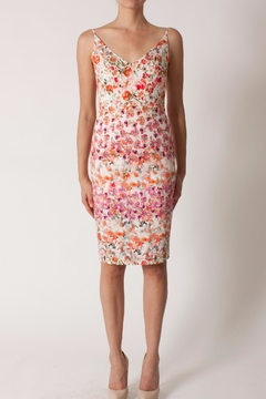 Black Halo Floral Sheath Dress - Product List Image