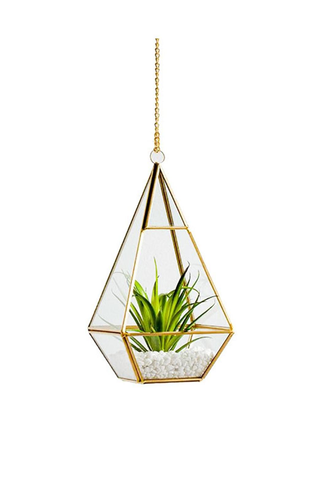 Black Rooster Decor Hanging Diamond Terrarium From Toronto By Black Rooster Decor Shoptiques