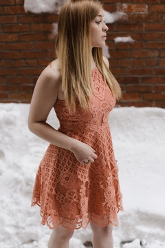 Shoptiques Product: Charlotte Lace Dress