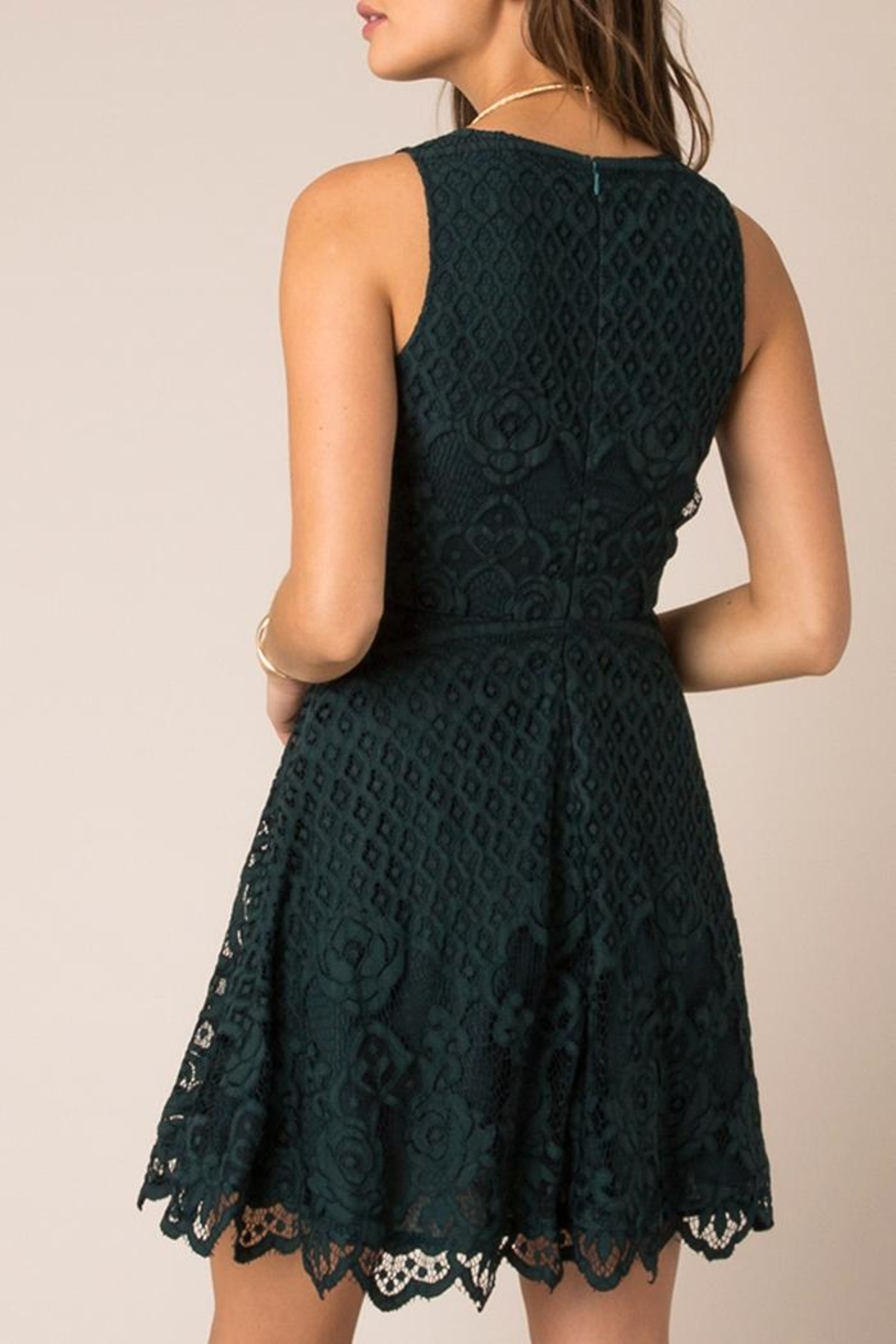Black Swan Rose Lace Dress - Front Full Image