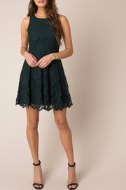 Black Swan Rose Lace Dress - Back cropped