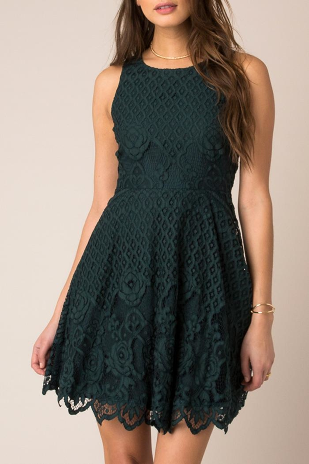 Black Swan Rose Lace Dress - Front Cropped Image