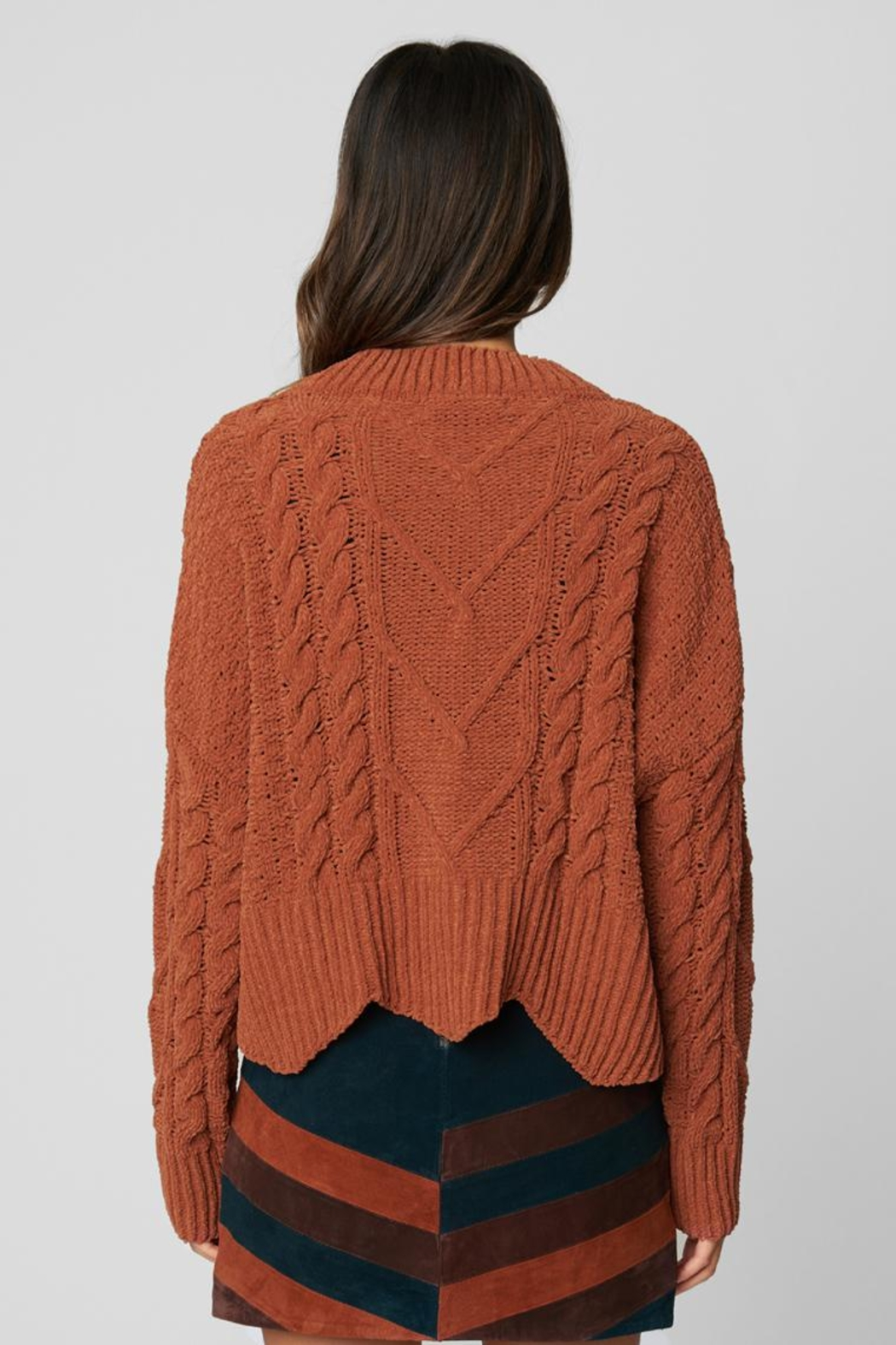 Blank NYC Terra Cotta Sweater - Back Cropped Image