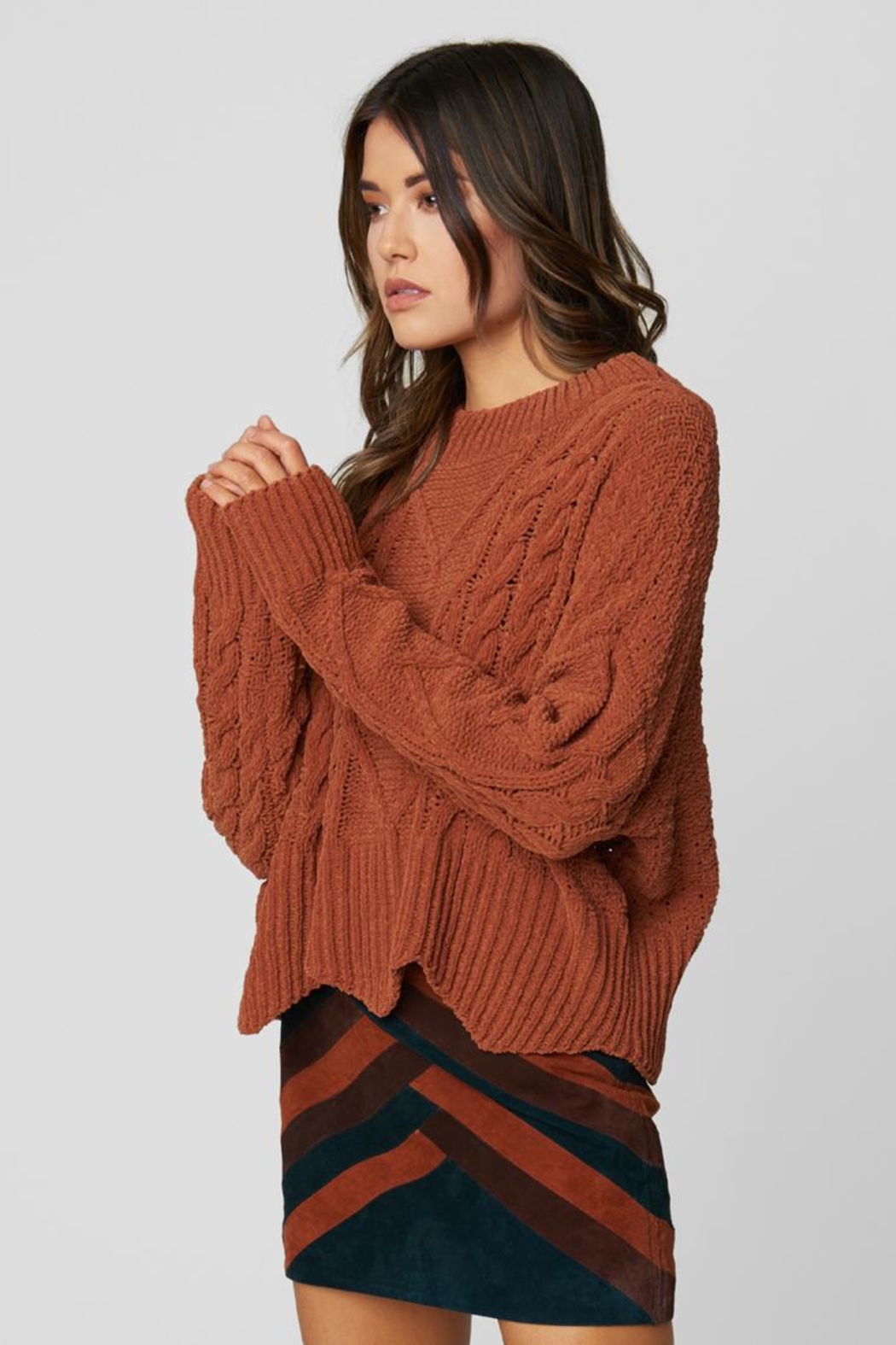 Blank NYC Terra Cotta Sweater - Side Cropped Image