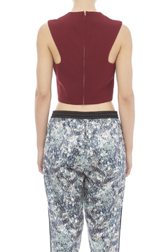 Shoptiques Product: Wine Crop Top