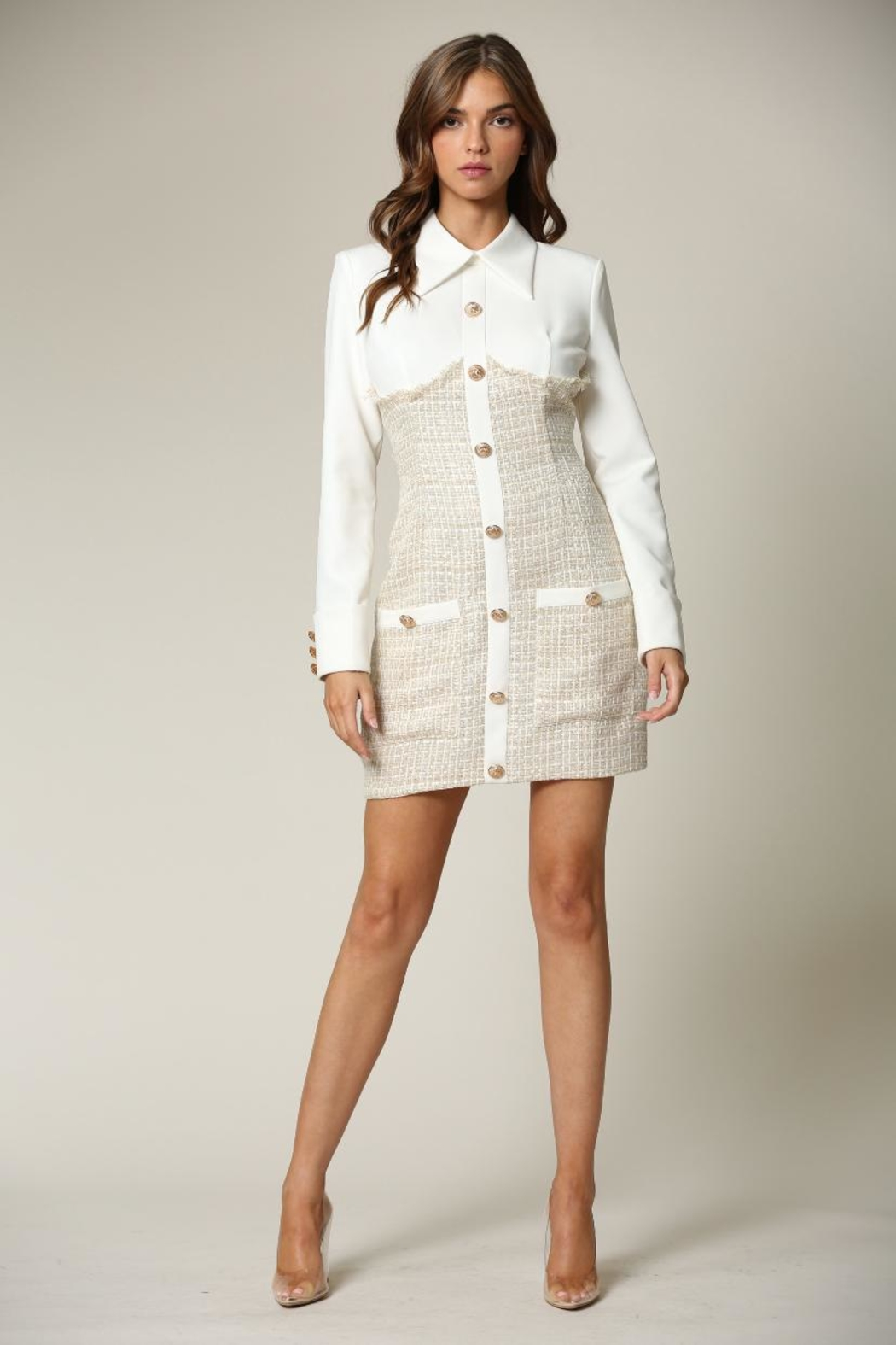 Blithe  Button-Down Tweed Dress - Main Image