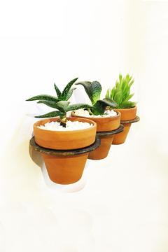 Shoptiques Product: Plant Holder