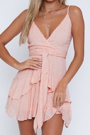 Blossom Fame Mini Dress - Front full body