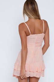 Blossom Fame Mini Dress - Side cropped