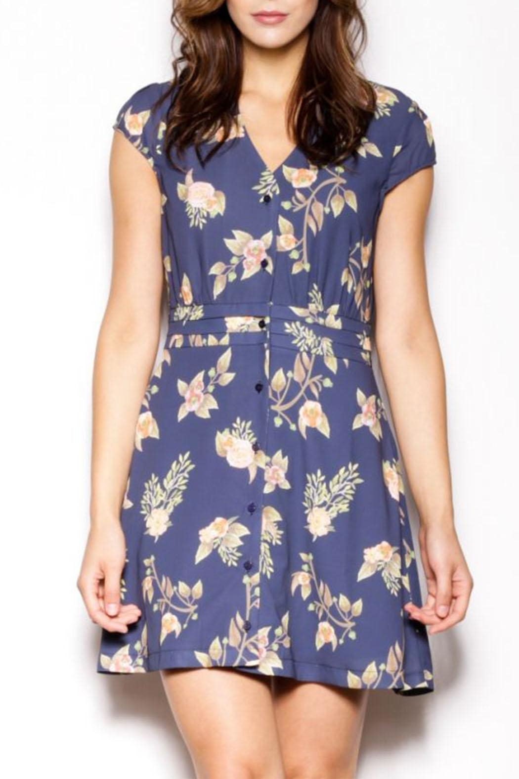 Pink Martini Collection Blossom Out Dress - Back Cropped Image