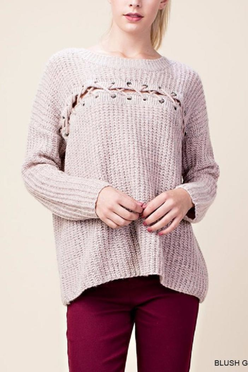 Blu Heaven Lace Across Sweater - Front Cropped Image