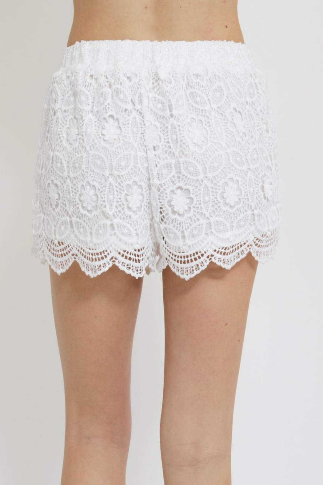 Blu Pepper Crochet Shorts - Back Cropped Image