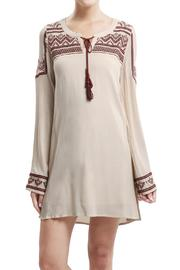 Blu Pepper Embroidered Woven Dress - Product Mini Image