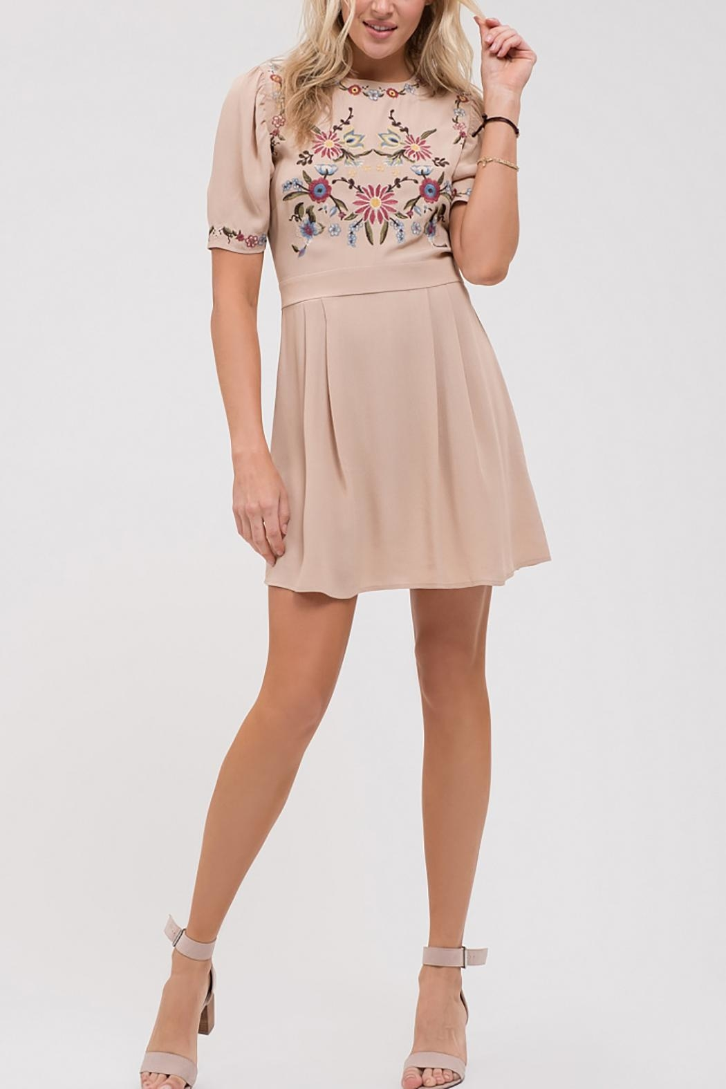 Blu Pepper Pleated Embroidered Dress - Main Image