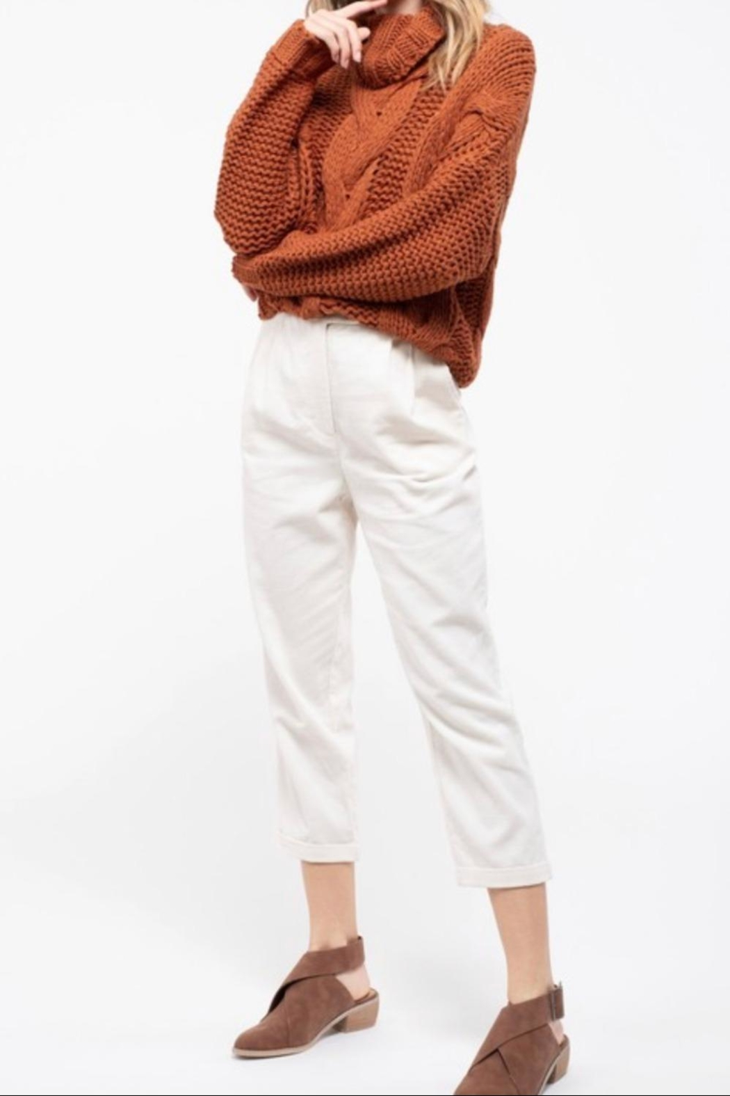 Blu Pepper Turtleneck Knit Sweater - Back Cropped Image