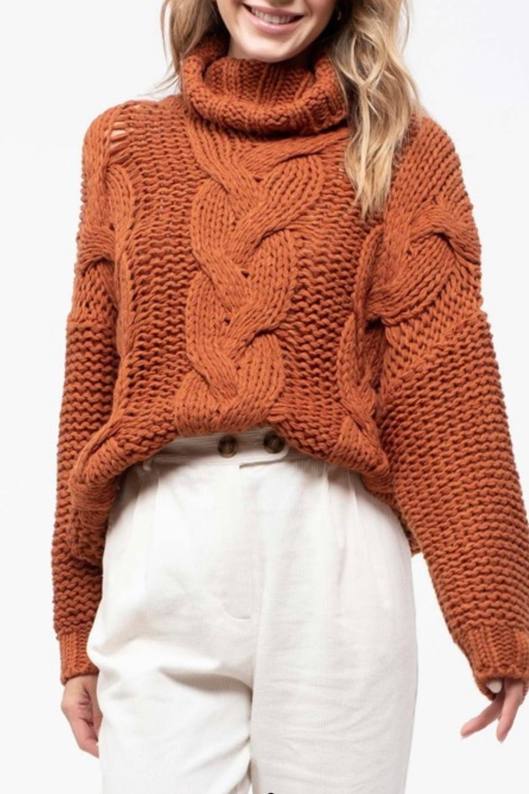 Blu Pepper Turtleneck Knit Sweater - Side Cropped Image