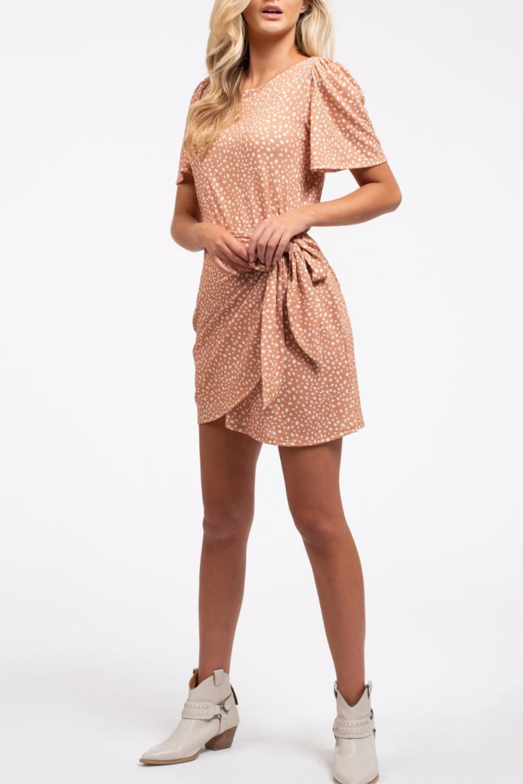 Blu Pepper Wrapped-In-Dots Dress - Back Cropped Image