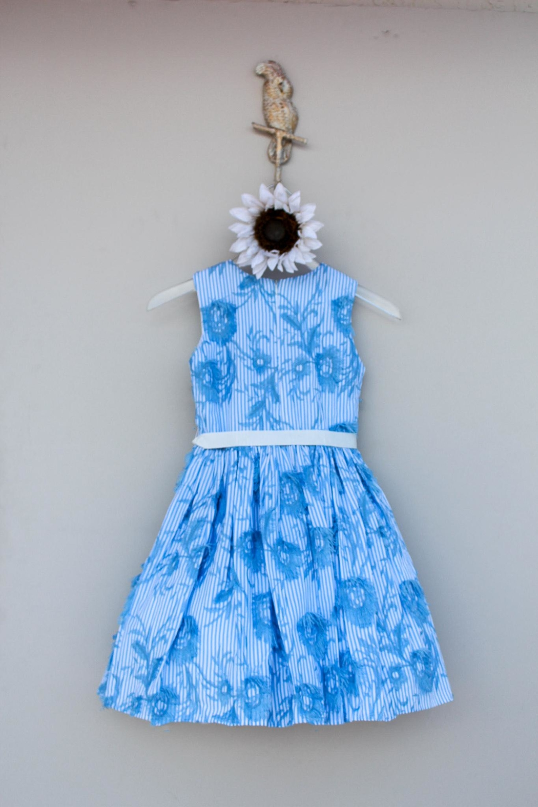 Halabaloo Blue Floral  Dress - Front Full Image