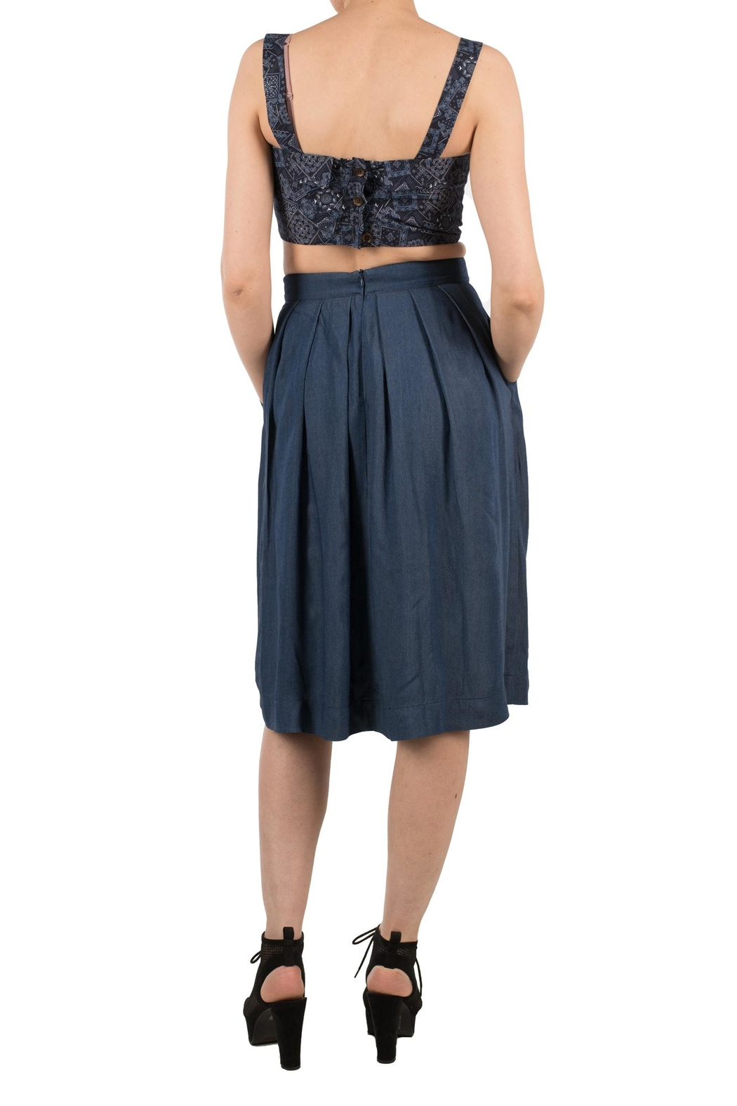 Birds of North America Blue Pleated Skirt - Front Full Image