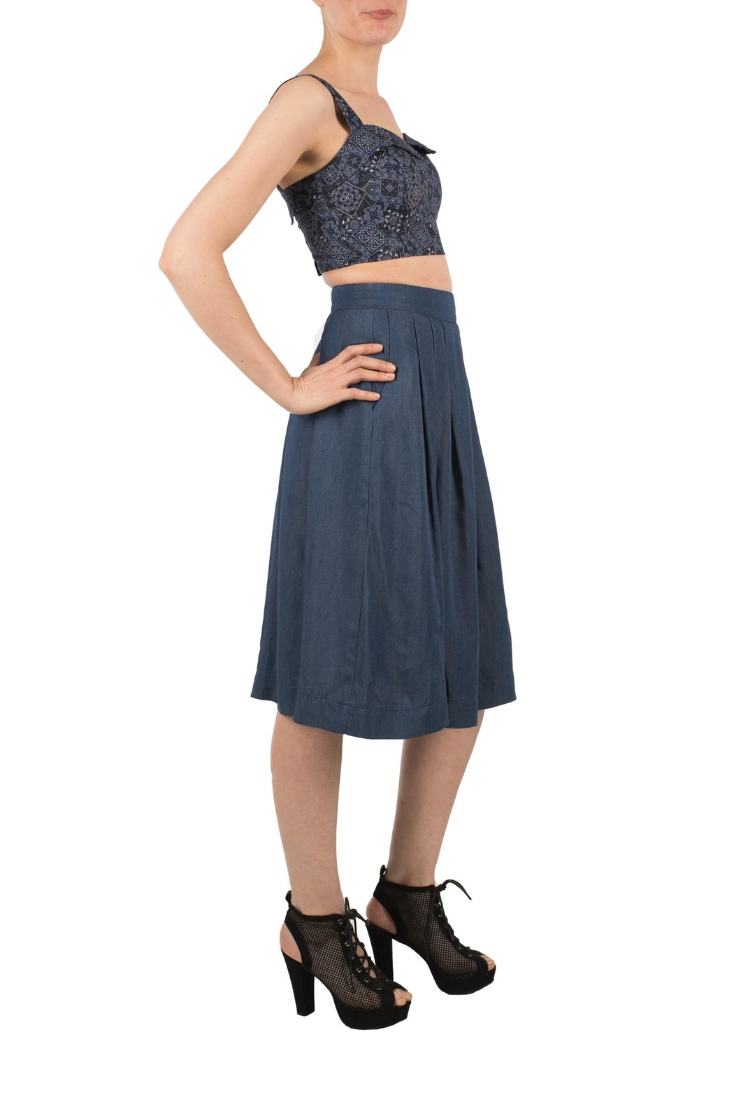 Birds of North America Blue Pleated Skirt - Side Cropped Image