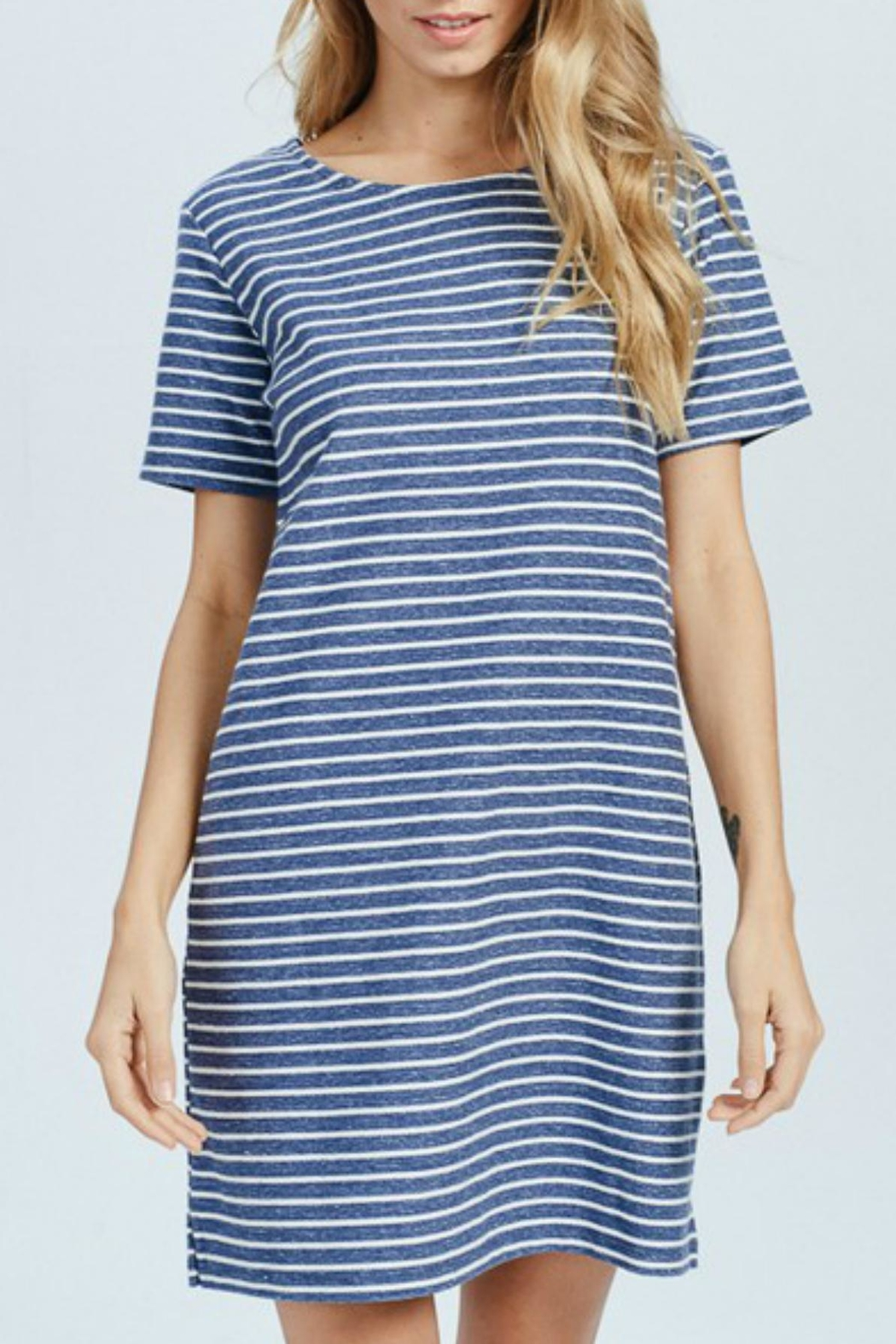 Wishlist Blue-Striped Mini Dress - Front Cropped Image