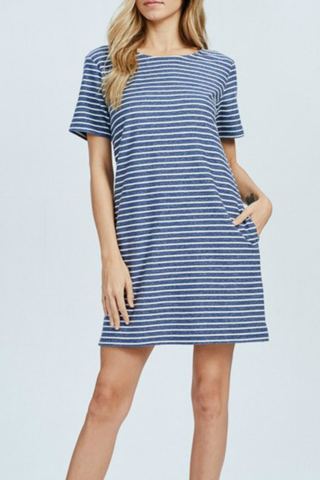 Wishlist Blue-Striped Mini Dress - Side Cropped Image