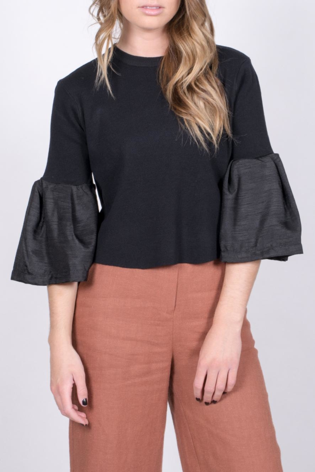blue blush Bell Sleeve Crop Top - Main Image