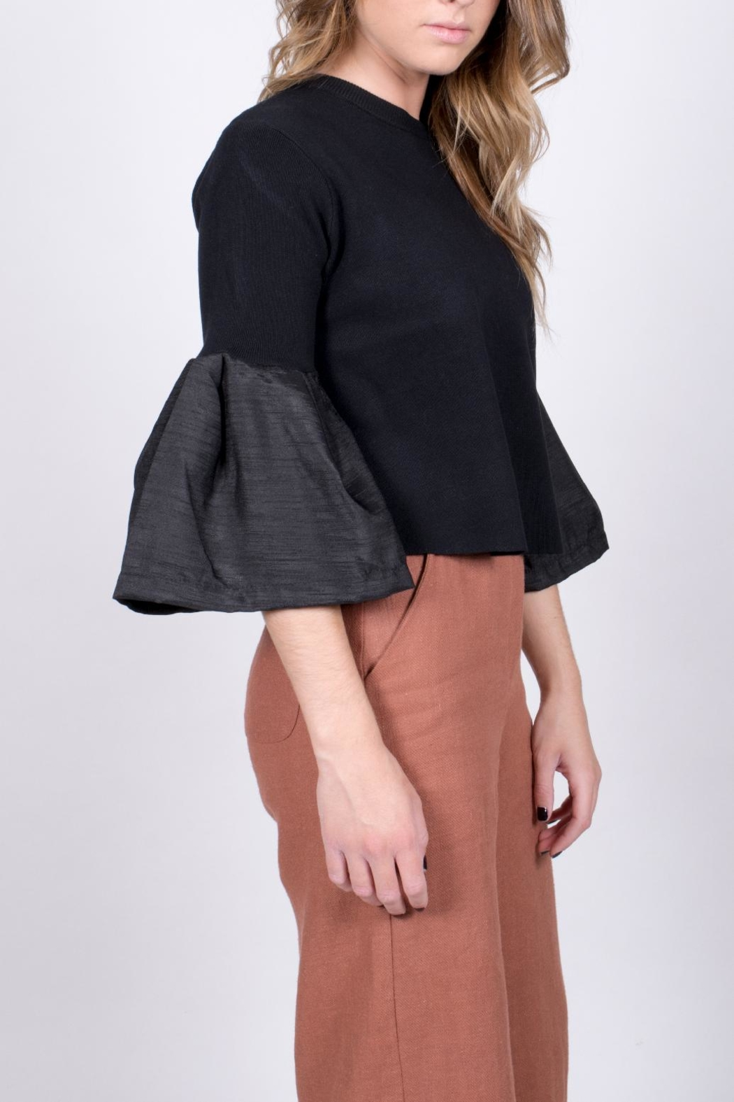 blue blush Bell Sleeve Crop Top - Front Full Image