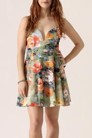 blue blush Floral Flare Dress - Product Mini Image