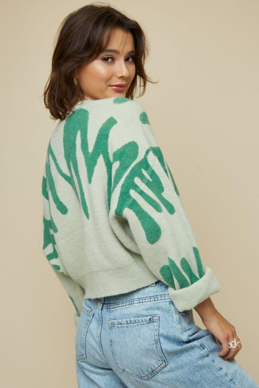 blue blush Round Neck Printed Sweater Crop Top - Front Full Image