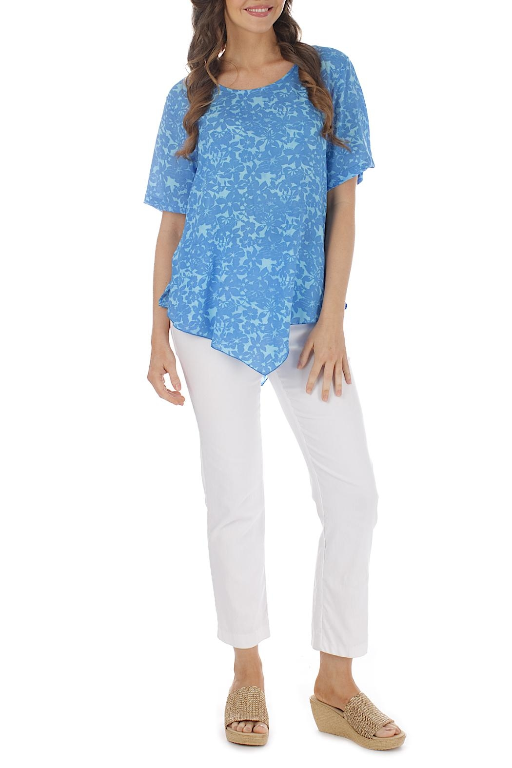 Blue Ginger Point Blouse - Main Image